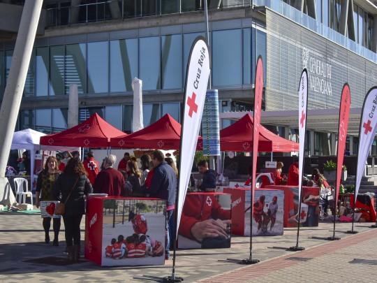 (Español) La Fundació Baleària participa este sábado en el Día de la Banderita con un maratón solidario
