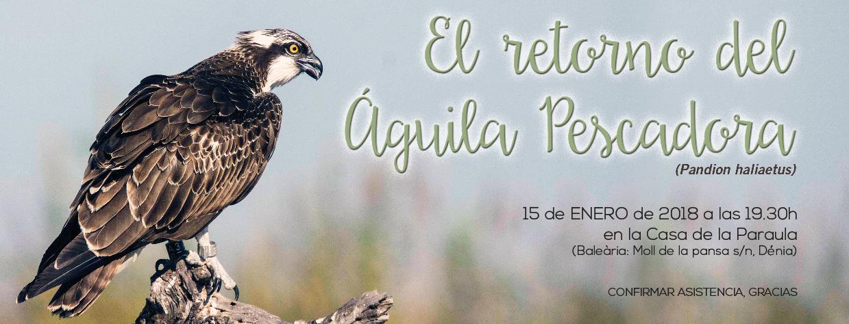 Presentación de los resultados del estudio para el proyecto 'Reintroducción del Águila Pescadora en la comarca de la Marina Alta y la Safor'